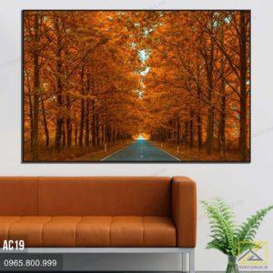Tranh Con Đường Giữa Rừng Cây Lá Đỏ AC19