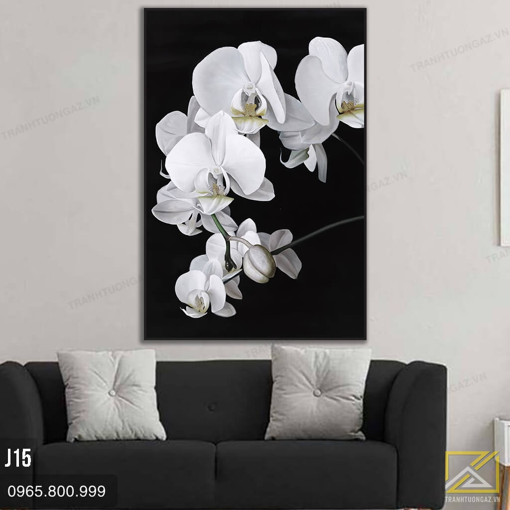 Tranh Hoa Lan Trắng - J15 2